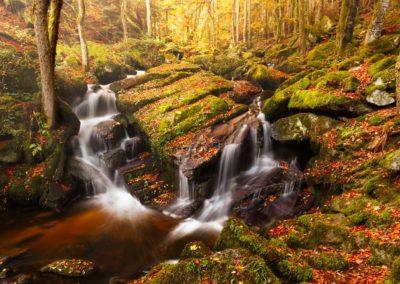 Druides Valley